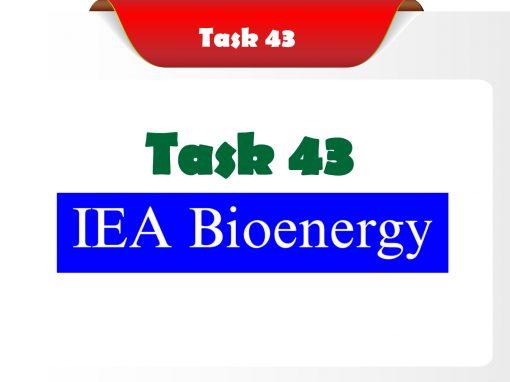 Task 43