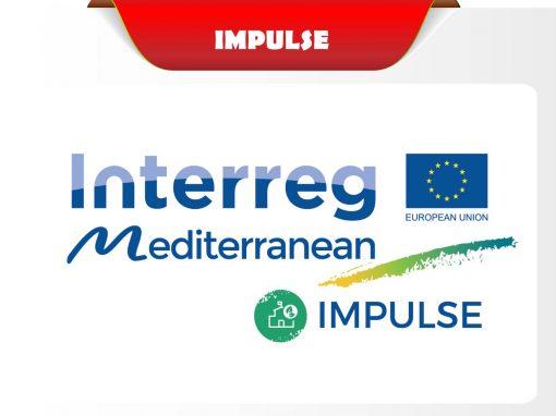 IMPULSE projekt
